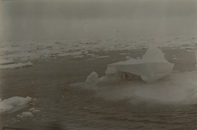 Loose drift ice 7 AM.
