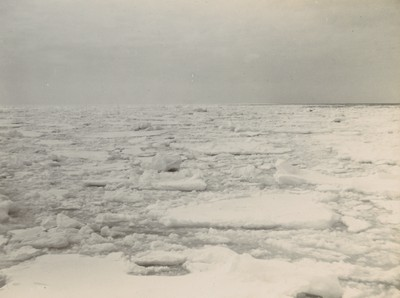 Close drift ice