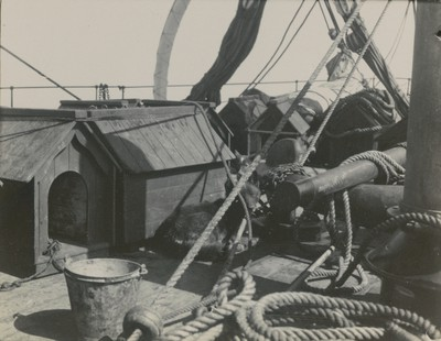 Dog kennel on focsle at sea