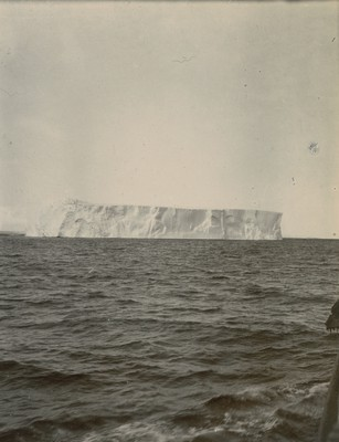 Iceberg off barrier 260 feet height