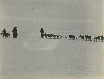 Start of sealing party with dogs and sledges
