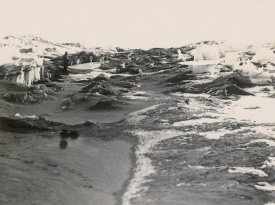 Bed of fresh water stream. McMurdo Strait.