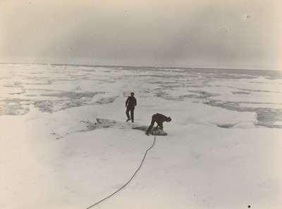 Securing seals in ice pack (1)