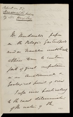 Referee report by T. H. Huxley on 'Remarks on the Anatomy of Macgillivrayia pelagica and Cheletropis Huxleyi (Forbes); Suggesting the Establishment of a New Order of Gasteropoda' and 'On the Anatomy of Nautilus umbilicatus, Compared with That of Nautilus Pompilius' and 'Further Observations on the Anatomy of Macgillivrayia, Cheletropis, and Allied Genera of Pelagic Gasteropoda' by J. Macdonald